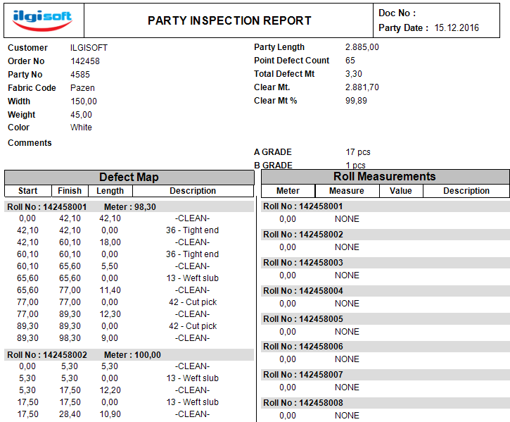 Party Inspection Report